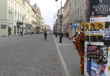 Szop-Patrol na ulicach Łodzi Archiwum Grupowej Oczyszczalni Ścieków w Łodzi